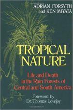 tropical_nature